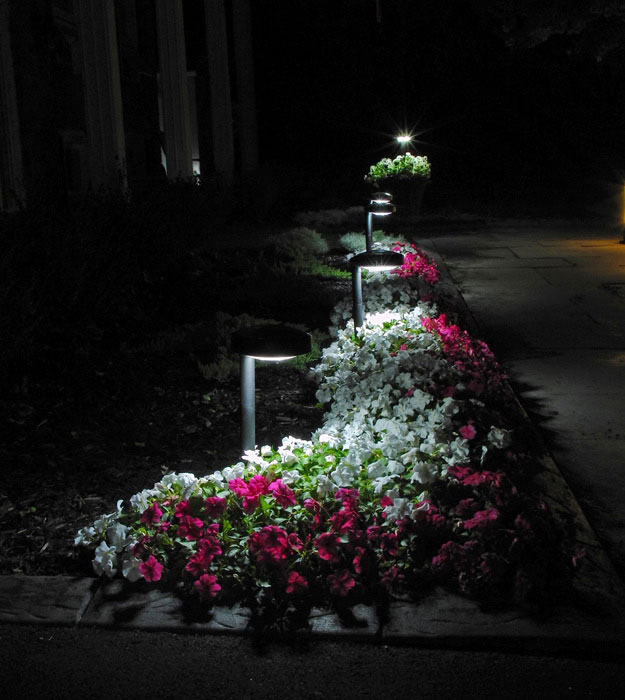 new natural white solar pathway garden - Solar Pathway Lights