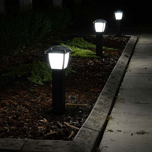 Solar Lights to Highlight Gardens and Pathways