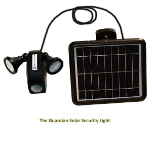 Motion Sensor Solar Light