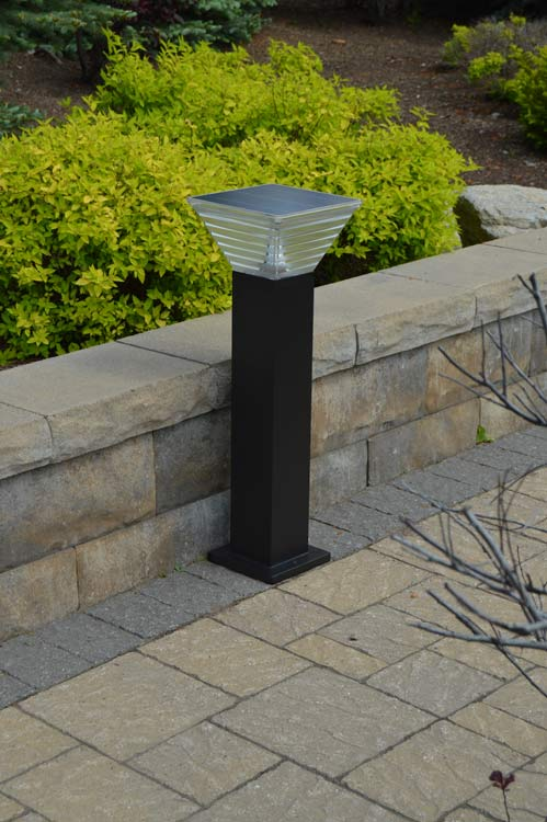 Solar Light for Walkways, Driveways, Pathways, Pool Decks