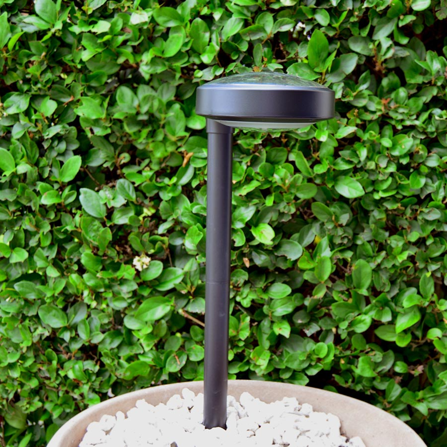 Pathway Garden Solar Light - DISC2i  (2pcs per pack). Updated Model