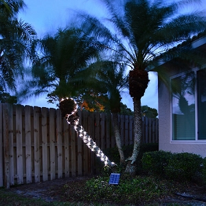 Solar Rope Light with 100LEDs over 30feet. 2 brightness settings on this year round light